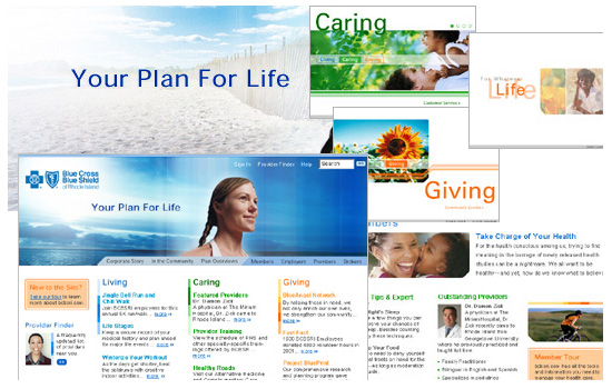 Blue Cross Blue Shield: Web Design, Style Guide, Image Catalog System